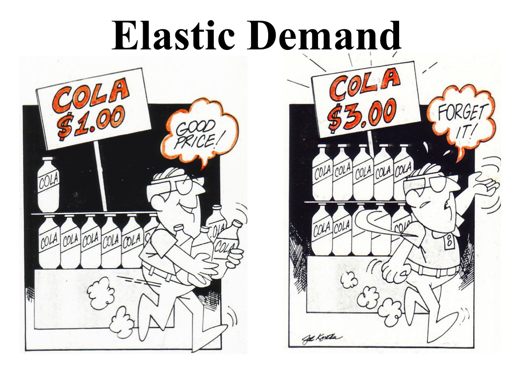 Elasticity Demand Examples Elastic Demand
